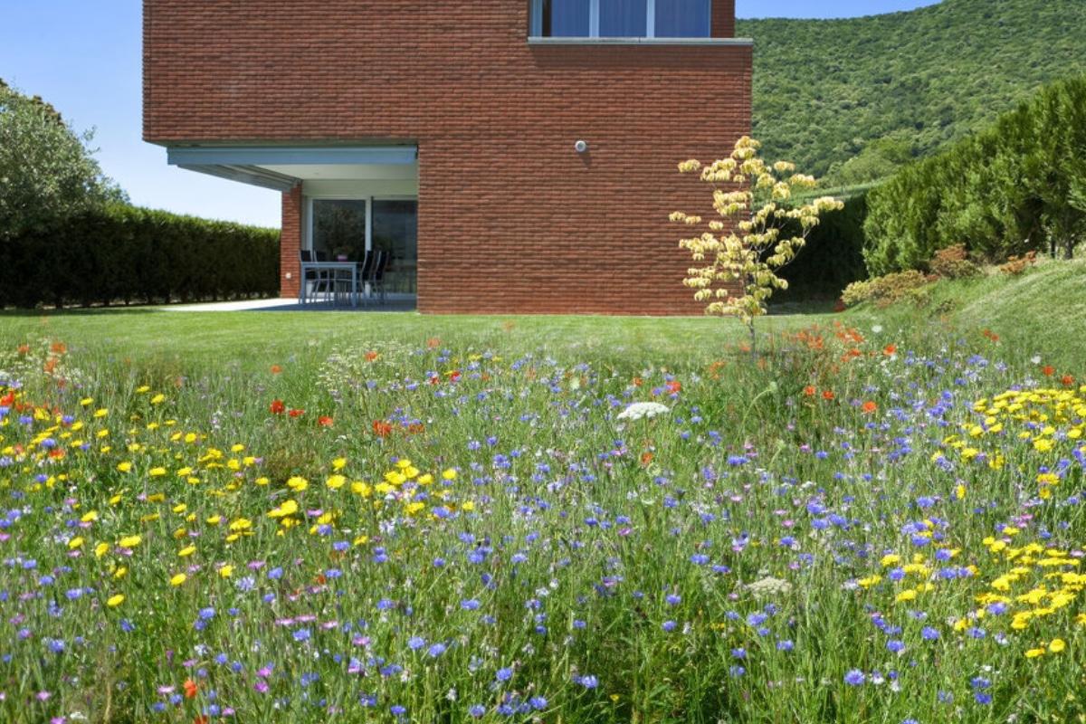 impressie moderne tuin